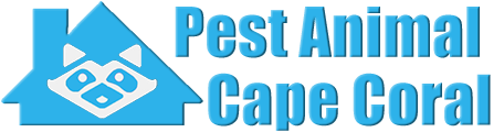 Cape Coral Wildlife and Animal Removal